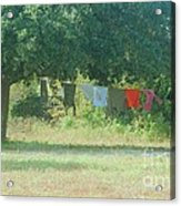 Laundry Hanging From The Tree Acrylic Print
