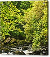 Lauragh River West Cork Acrylic Print