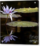 Lavendar Reflections In The Lake Acrylic Print