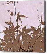 Lavender And Taupe Haiku Acrylic Print