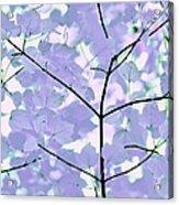 Lavender Blues Leaves Melody Acrylic Print