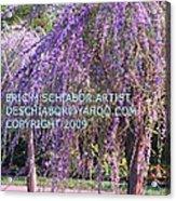 Lavender Butterfly Bush Acrylic Print