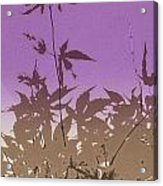 Purple Haiku Acrylic Print