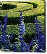 Lavender Maze Acrylic Print
