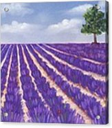 Lavender Season Acrylic Print