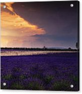 Lavender Thunderstorm Acrylic Print