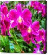 Layer Cut Out Art Flower Orchid Acrylic Print