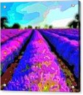 Layer Landscape Art Lavender Field Acrylic Print