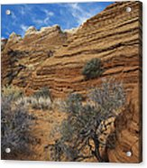 Layered Sandstone Acrylic Print