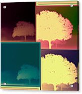 Layers Of Fog Acrylic Print