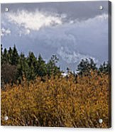 Layers Of Spring Acrylic Print