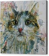 Le Chat Acrylic Print