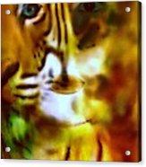Le Tigre  Acrylic Print