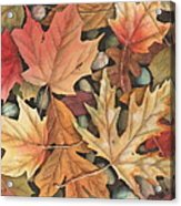 Leaf It To Me Acrylic Print