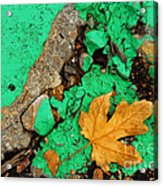 Leaf On Green Cement Acrylic Print