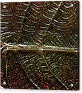 Leafage Acrylic Print