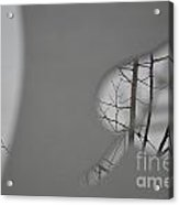 Leafless Acrylic Print