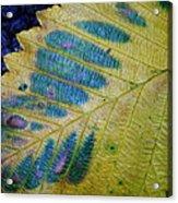 Leafscape 1 Acrylic Print