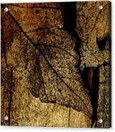 Leafwood Acrylic Print