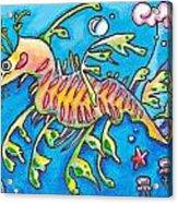 Leafy Sea Dragon Acrylic Print by Tamara Blyth