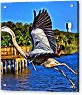 Leaping Egret Acrylic Print