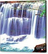 Leatherwood Falls Acrylic Print