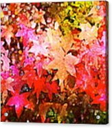 Leaves 11 Acrylic Print