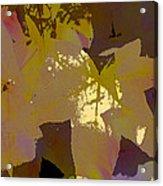 Leaves 9 Acrylic Print