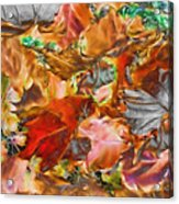 Leaves Abstraction I   Acrylic Print