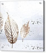 Leaves In Snow Acrylic Print