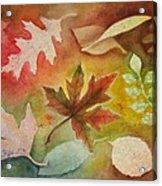 Leaves L Acrylic Print