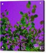 Leaves On A Purple Sky Acrylic Print