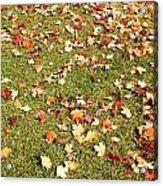 Leaves On Grass Acrylic Print