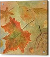 Leaves Vll Acrylic Print