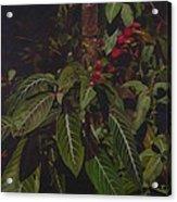 Leaving Monroe Acrylic Print