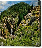Leavitt Falls From Afar Acrylic Print