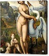 Leda And Swan Acrylic Print