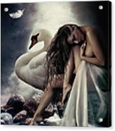 Leda And The Swan Acrylic Print by Shanina Conway