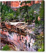 Ledge At Emerald Pools In Zion National Park Acrylic Print