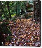 Ledges Overlook Trail 5 Acrylic Print