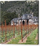 Ledson Winery And Vineyard In Late Winter Just Before The Bloom 5d22192 Acrylic Print by Wingsdomain Art and Photography