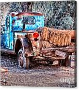 Left Over Hay Acrylic Print