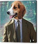 Legal Beagle Acrylic Print by Nikki Smith