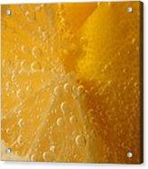 Lemon 45 Acrylic Print