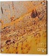 Lemon Aide Acrylic Print