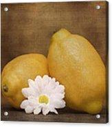 Lemon Fresh Still Life Acrylic Print