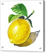 Artz Vitamins The Lemon Acrylic Print