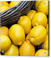 Lemons 01 Acrylic Print