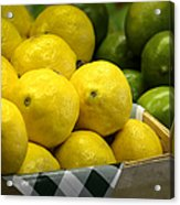 Lemons And Limes Acrylic Print by Julie Palencia