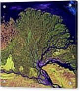 Lena River Delta Acrylic Print by Adam Romanowicz